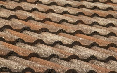 When is a Roof Repair the Right Choice?