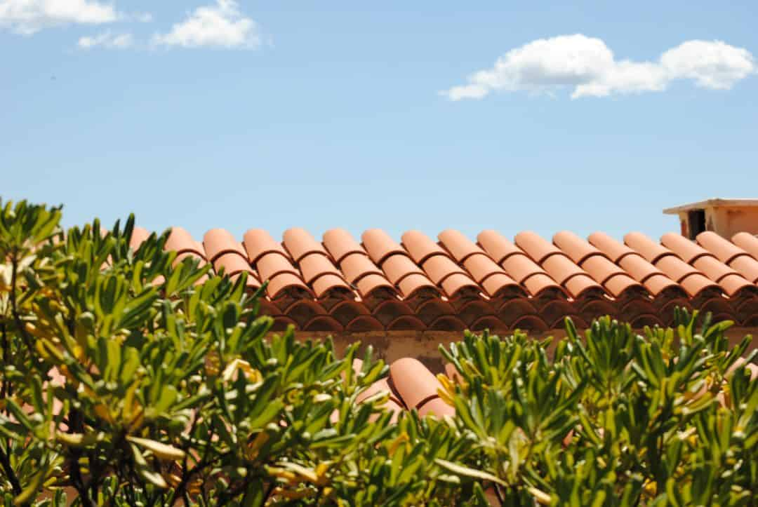 a terracotta roof with leaves in the foreground